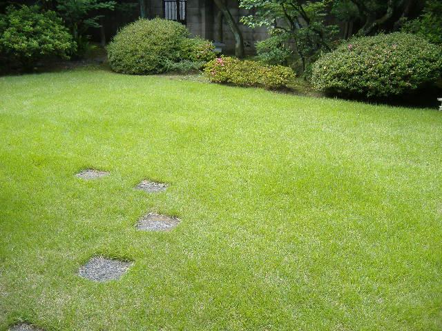 小杉造園が管理する芝生のお庭