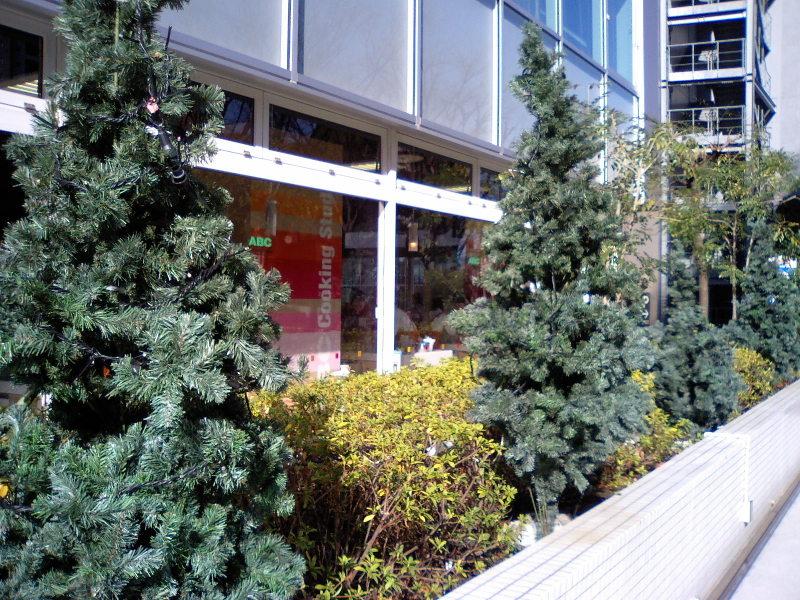 20100125tsukurimono