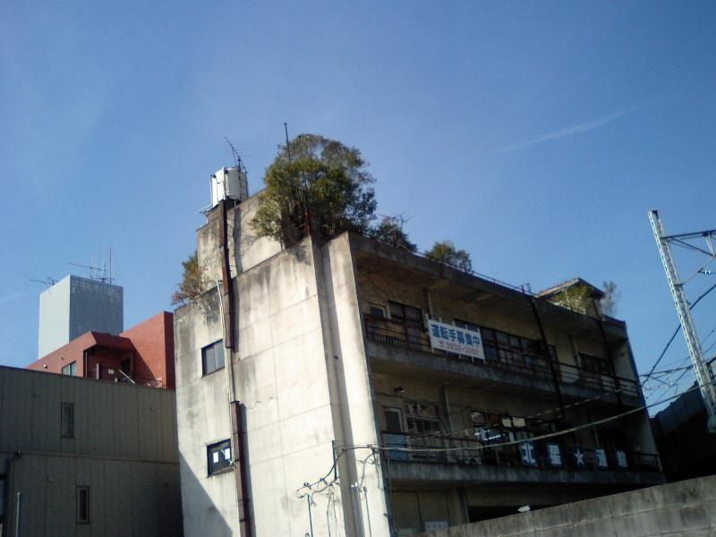 20100215okujou