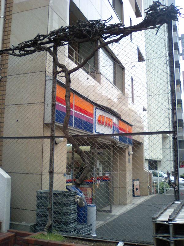 20100705tsuta