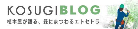 KOSUGI BLOG 植木屋が語る緑にまつわるエトセトラ